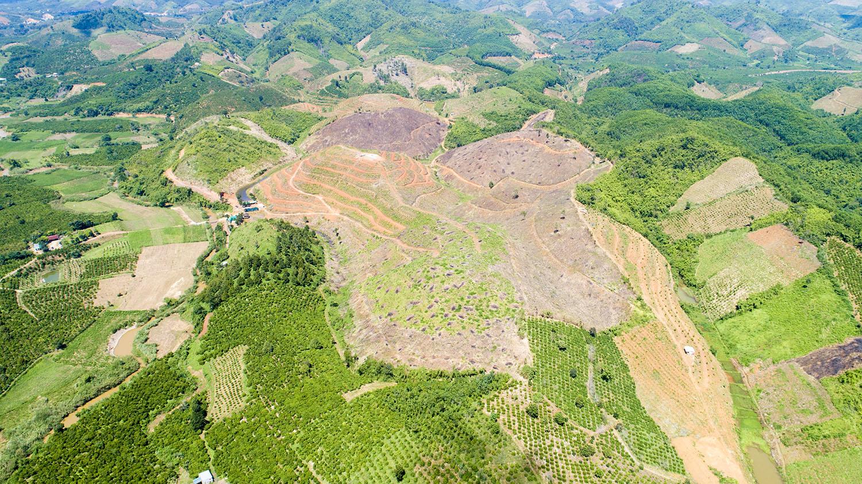 Trang trại sinh thái Tân Lâm Nguyên phủ một màu xanh rộng lớn