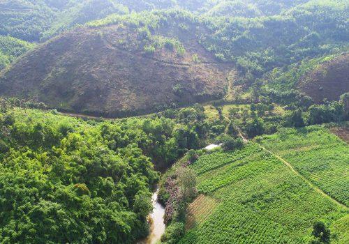 Phối cảnh dự án trang trại sinh thái Lâm Nguyên