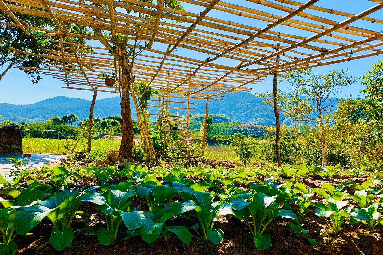 Mô hình trang trại sinh thái tại Lâm Đồng được nhiều nhà đầu tư nhắm đến