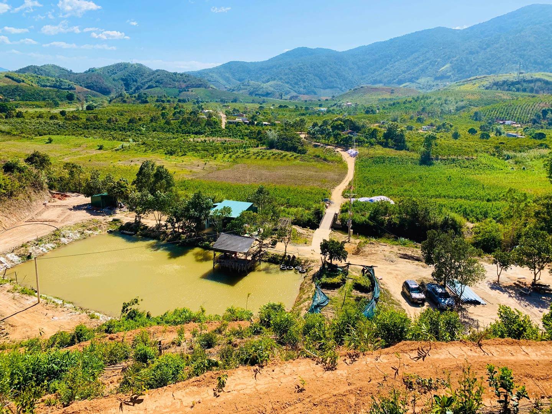 Du lịch sinh thái nghỉ dưỡng Tân Lâm Nguyên