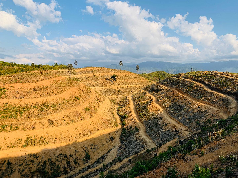 Một phần dự án trang trại Tân Lâm Nguyên tại Lâm Đồng