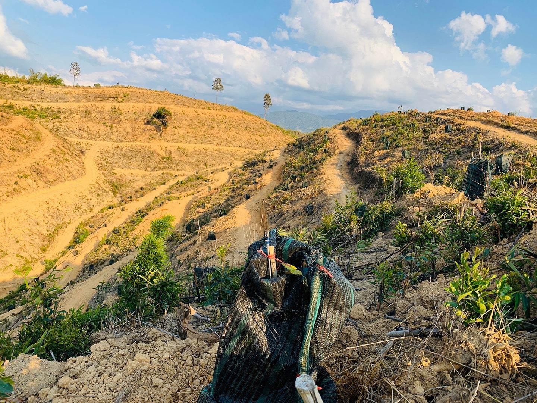Tân Lâm Nguyên kết hợp du lịch sinh thái và phát triển kinh tế