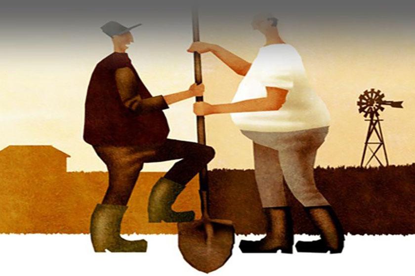 Đất bị cấp chồng lấn phải làm sao? Ảnh minh họa: Internet
