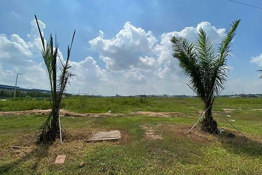 Bình Dương: Chuyển 346ha đất trồng cao su sang làm khu công nghiệp