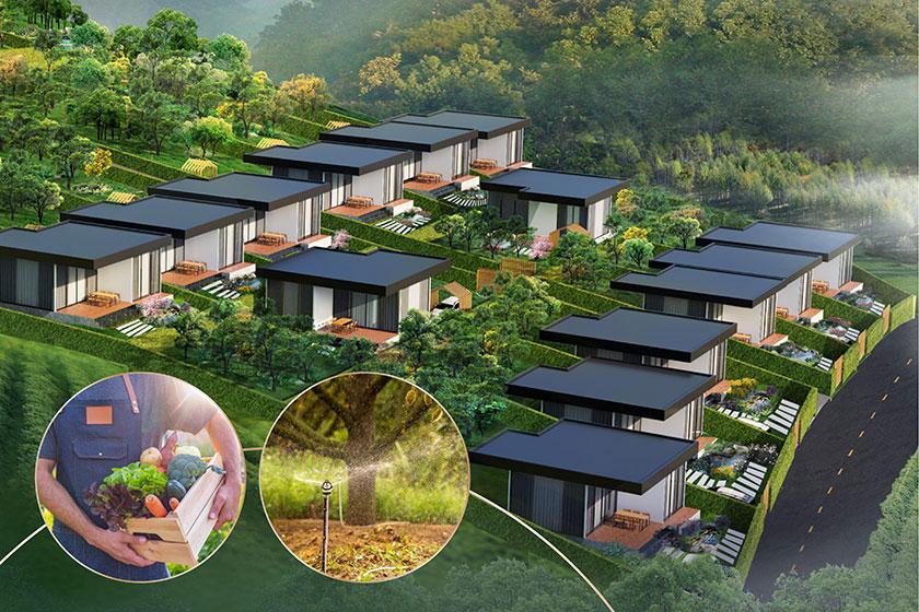 Tiềm năng sinh lời từ khoản thu nhập thụ động - The Green Farmhouse