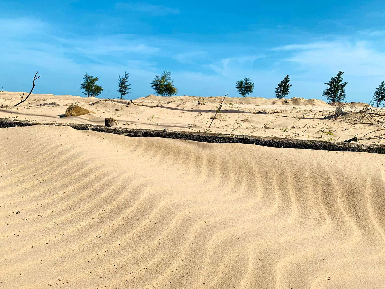 Khám phá cung đường cát trắng gần Lộc An Sandy Homes