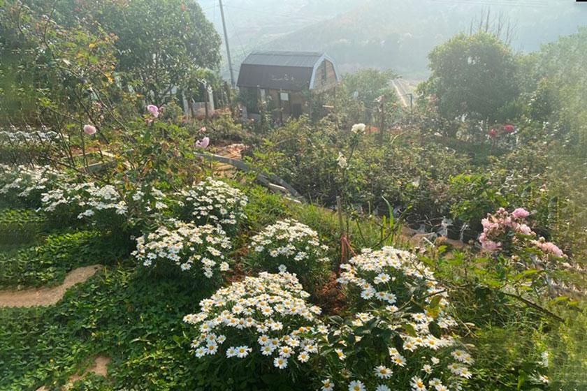 Mua đất làm nhà vườn đẹp 01