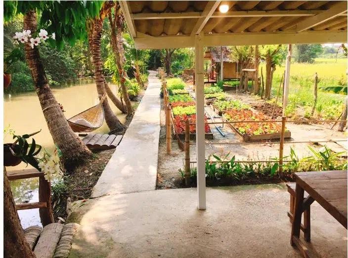 Khu vườn được thiết kế tạo khung gỗ.
