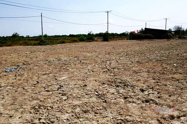 Thửa đất nuôi trồng thuỷ sản ở xã An Thới Đông, huyện Cần Giờ đang được rao bán giá 28 tỷ đồng.