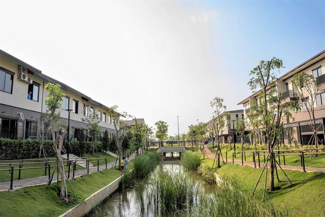 Cả nhà anh thích thú với các hệ thống công viên kênh đào mang thiên nhiên sông nước đến gần hơn với mỗi nhà.