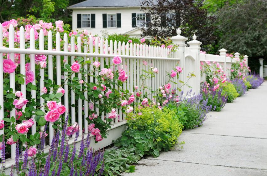 Hàng rào sân vườn không nên quá gần hoặc cao hơn ngôi nhà.