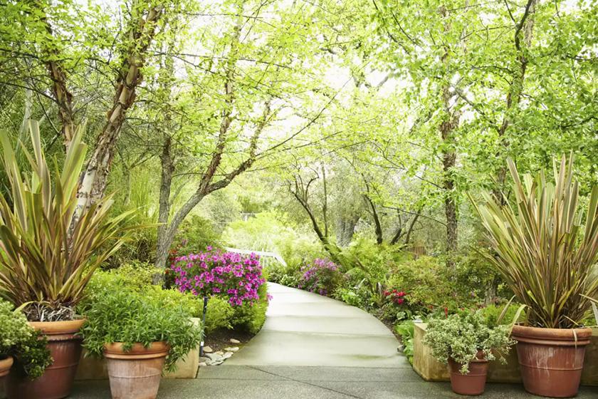 Phong thủy sân vườn là sự sắp xếp, bài trí cây, hoa, nước, đèn chiếu sáng, lối đi, hàng rào... sao cho đảm bảo hài hòa âm dương, Ngũ hành.