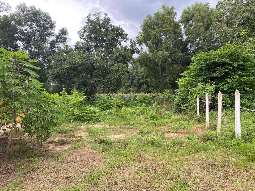 Chủ đất có thể thực hiện chuyển nhượng đất vườn với điều kiện đầy đủ giấy từ pháp lý