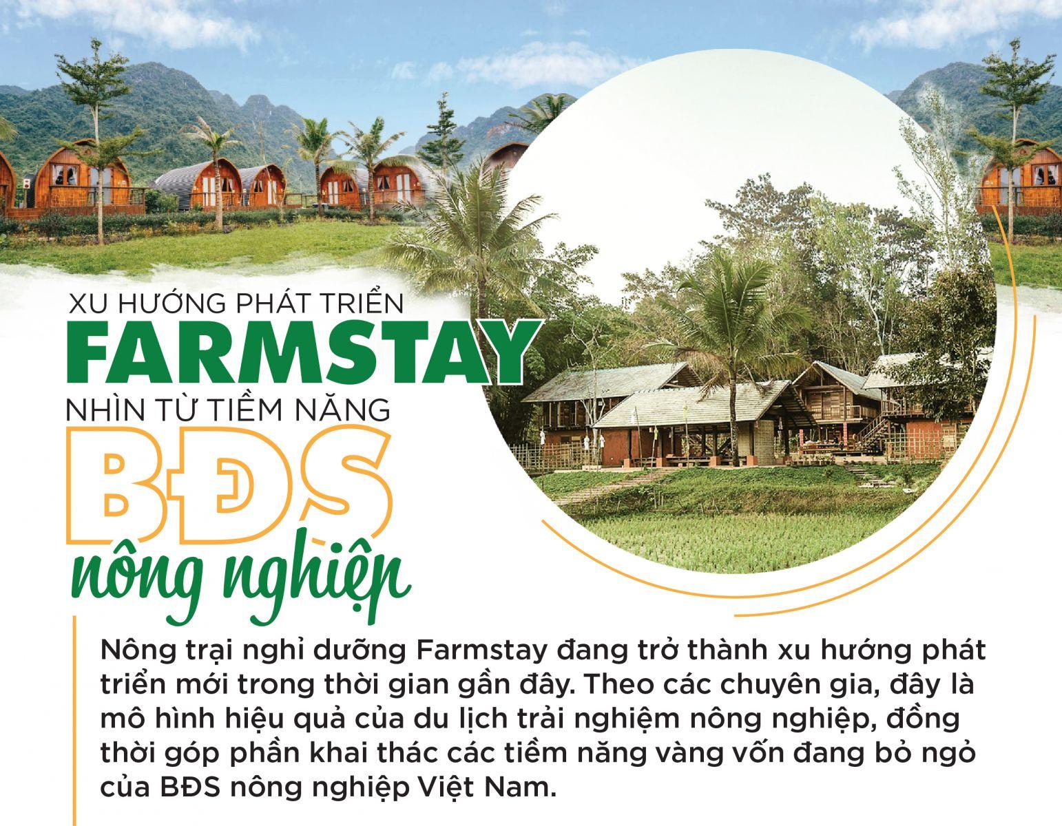 Xu hướng phát triển Farmstay nhìn từ tiềm năng bất động sản Nông Nghiệp 01